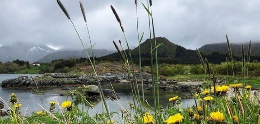 Fjerde våtaste mai på 100 år