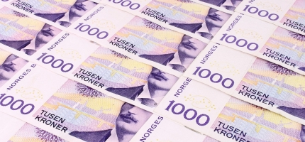 Mest NAV pengar til Flå - minst til Hemsedal
