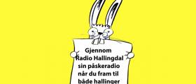REKLAME OG AUKSJONSBIDRAG TIL PÅSKERADIOEN