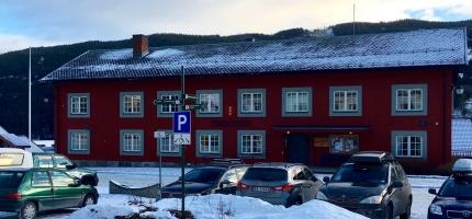 3 nye positive prøver i Ål i dag torsdag