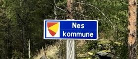 Nes kommunestyre