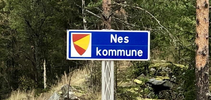Nesbyen kommune