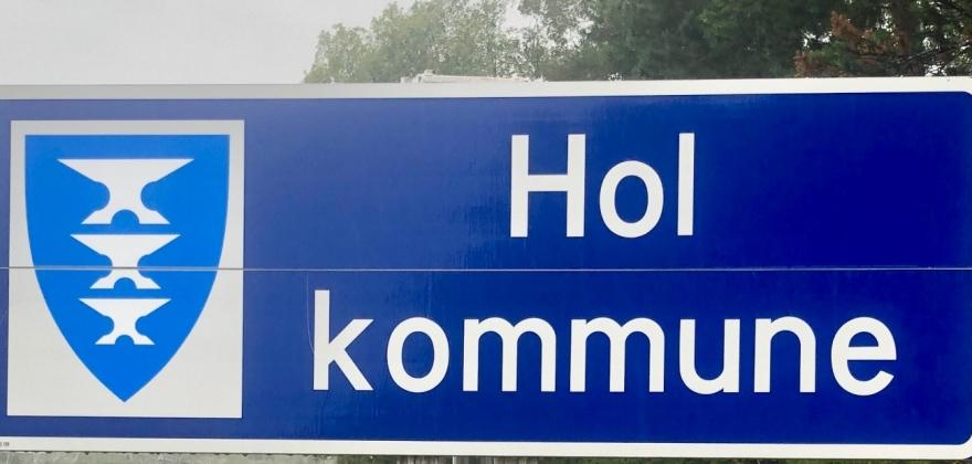 Coronatiltak i Hol kommune