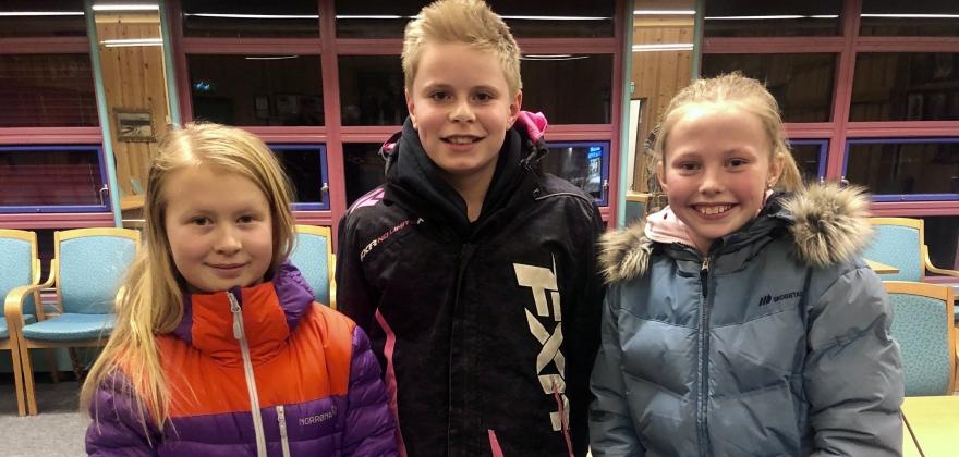 Nedre-Ål 1 sikra seg semifinaleplass