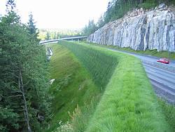 Grønn mur